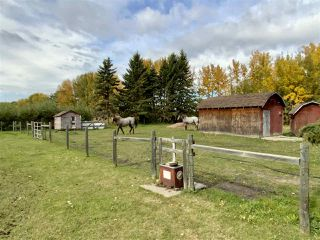 Photo 42: 472080 RGE RD 245: Rural Wetaskiwin County House for sale : MLS®# E4216024