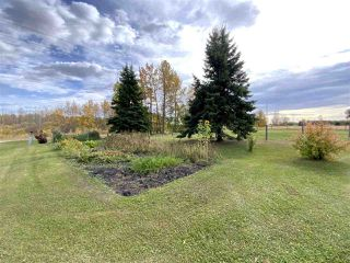 Photo 33: 472080 RGE RD 245: Rural Wetaskiwin County House for sale : MLS®# E4216024