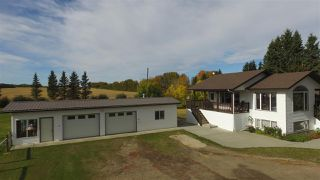 Photo 47: 472080 RGE RD 245: Rural Wetaskiwin County House for sale : MLS®# E4216024