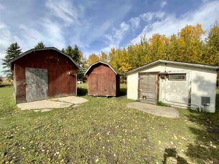 Photo 37: 472080 RGE RD 245: Rural Wetaskiwin County House for sale : MLS®# E4216024