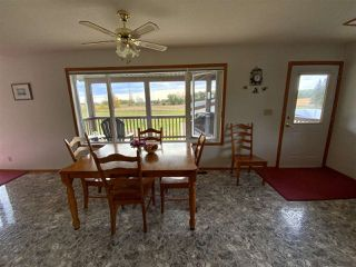 Photo 10: 472080 RGE RD 245: Rural Wetaskiwin County House for sale : MLS®# E4216024