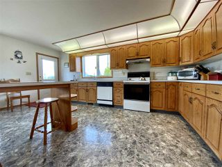 Photo 8: 472080 RGE RD 245: Rural Wetaskiwin County House for sale : MLS®# E4216024