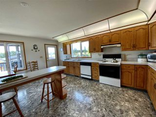Photo 4: 472080 RGE RD 245: Rural Wetaskiwin County House for sale : MLS®# E4216024