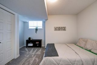 Photo 30: 125 Chinook Gate Boulevard SW: Airdrie Row/Townhouse for sale : MLS®# A1047739