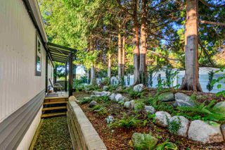 Photo 19: 38 13507 81 AVENUE in Surrey: Queen Mary Park Surrey Manufactured Home for sale : MLS®# R2501558