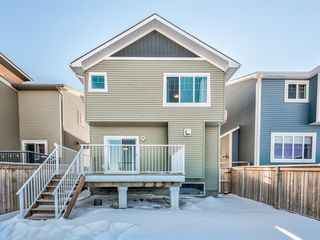 Photo 40: 228 Evansborough Way NW in Calgary: Evanston Detached for sale : MLS®# A1055287