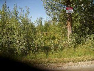 """Photo 3: DEWEY RD in Prince George: Upper Fraser Land for sale in """"SINCLAIR MILLS"""" (PG Rural East (Zone 80))  : MLS®# N162455"""