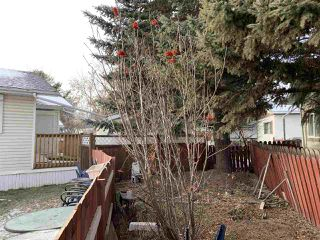Photo 27: 913 West Coast Place in Edmonton: Zone 59 Mobile for sale : MLS®# E4181586