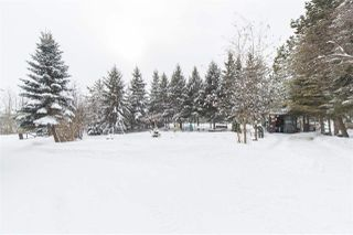 Photo 15: 450 50110 RGE RD 231: Rural Leduc County House for sale : MLS®# E4178694