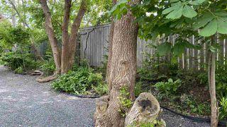 Photo 5: 773 Trenton Road in New Glasgow: 106-New Glasgow, Stellarton Residential for sale (Northern Region)  : MLS®# 202010881