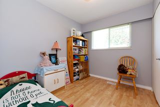 Photo 10: 22914 STOREY Avenue in Maple Ridge: East Central House for sale : MLS®# R2484029