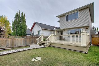Photo 43: 310 BRIDLEWOOD Court SW in Calgary: Bridlewood Detached for sale : MLS®# A1035871