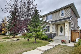 Photo 40: 310 BRIDLEWOOD Court SW in Calgary: Bridlewood Detached for sale : MLS®# A1035871