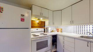 Photo 10: 1068 ROBERTS CREEK ROAD: Roberts Creek House for sale (Sunshine Coast)  : MLS®# R2520658