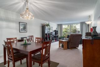 Photo 6: 213 518 MOBERLY ROAD in Vancouver: False Creek Condo for sale (Vancouver West)  : MLS®# R2116693