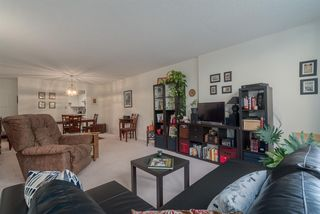 Photo 4: 213 518 MOBERLY ROAD in Vancouver: False Creek Condo for sale (Vancouver West)  : MLS®# R2116693