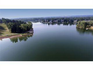 Photo 41: 216 Lake Bonavista Drive SE in Calgary: Lake Bonavista Detached for sale : MLS®# A1057415
