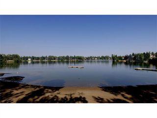Photo 42: 216 Lake Bonavista Drive SE in Calgary: Lake Bonavista Detached for sale : MLS®# A1057415