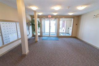 Photo 19: 411 1510 watt Drive in Edmonton: Zone 53 Condo for sale : MLS®# E4190695