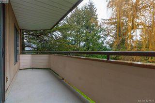 Photo 21: 204 3215 Alder St in VICTORIA: SE Quadra Condo Apartment for sale (Saanich East)  : MLS®# 841533