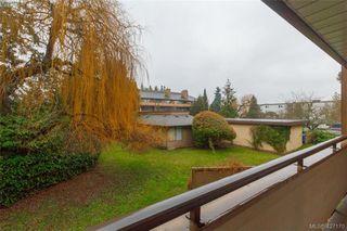 Photo 23: 204 3215 Alder St in VICTORIA: SE Quadra Condo Apartment for sale (Saanich East)  : MLS®# 841533
