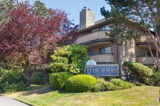 Photo 1: 204 3215 Alder St in VICTORIA: SE Quadra Condo Apartment for sale (Saanich East)  : MLS®# 841533