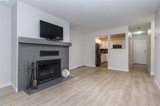 Photo 7: 204 3215 Alder St in VICTORIA: SE Quadra Condo for sale (Saanich East)  : MLS®# 841533