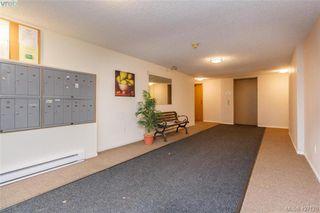 Photo 4: 204 3215 Alder St in VICTORIA: SE Quadra Condo for sale (Saanich East)  : MLS®# 841533
