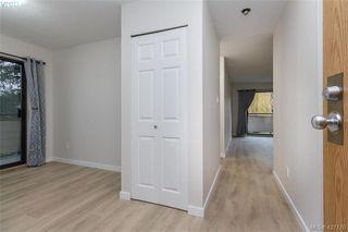 Photo 5: 204 3215 Alder St in VICTORIA: SE Quadra Condo for sale (Saanich East)  : MLS®# 841533