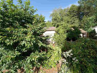 Photo 25: 5724 TRAIL Avenue in Sechelt: Sechelt District House for sale (Sunshine Coast)  : MLS®# R2480261