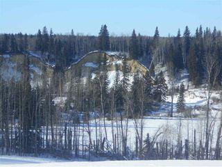 Photo 10: RR 52 Twp. Rd. 485: Rural Brazeau County Rural Land/Vacant Lot for sale : MLS®# E4186124