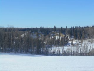 Photo 6: RR 52 Twp. Rd. 485: Rural Brazeau County Rural Land/Vacant Lot for sale : MLS®# E4186124