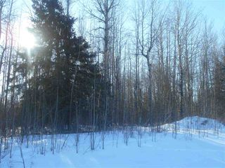 Photo 13: RR 52 Twp. Rd. 485: Rural Brazeau County Rural Land/Vacant Lot for sale : MLS®# E4186124