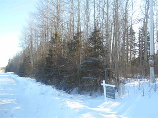 Photo 12: RR 52 Twp. Rd. 485: Rural Brazeau County Rural Land/Vacant Lot for sale : MLS®# E4186124