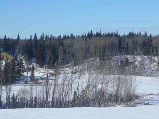 Photo 11: RR 52 Twp. Rd. 485: Rural Brazeau County Rural Land/Vacant Lot for sale : MLS®# E4186124