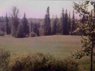 Photo 2: RR 52 Twp. Rd. 485: Rural Brazeau County Rural Land/Vacant Lot for sale : MLS®# E4186124