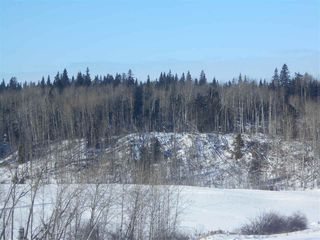 Photo 8: RR 52 Twp. Rd. 485: Rural Brazeau County Rural Land/Vacant Lot for sale : MLS®# E4186124