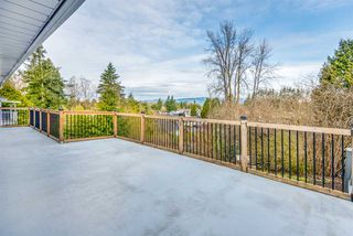 Photo 17: 22845 125A Avenue in Maple Ridge: East Central House for sale : MLS®# R2449267