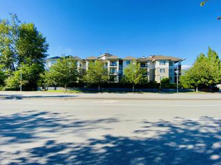 "Photo 1: D210 8929 202 Street in Langley: Walnut Grove Condo for sale in ""THE GROVE"" : MLS®# R2467836"