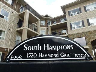 Photo 28: 204 1520 HAMMOND Gate in Edmonton: Zone 58 Condo for sale : MLS®# E4204664