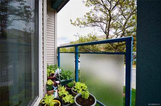Photo 14: 202 2310 Trent St in Victoria: Vi Jubilee Condo Apartment for sale : MLS®# 844141