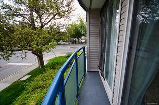 Photo 15: 202 2310 Trent St in Victoria: Vi Jubilee Condo Apartment for sale : MLS®# 844141