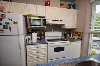 Photo 4: 202 2310 Trent St in Victoria: Vi Jubilee Condo for sale : MLS®# 844141