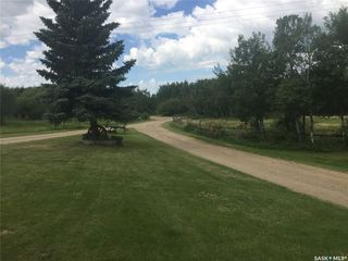 Photo 8: Lashburn Acreage in Wilton: Residential for sale (Wilton Rm No. 472)  : MLS®# SK823966