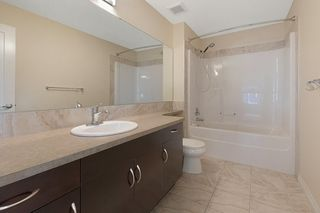 Photo 22: 5625 168A Avenue in Edmonton: Zone 03 House for sale : MLS®# E4224263