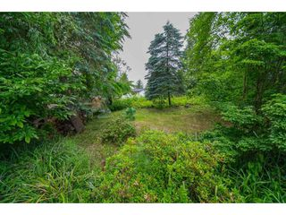Photo 38: 35371 WELLS GRAY Avenue in Abbotsford: Abbotsford East House for sale : MLS®# R2462573