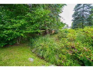 Photo 37: 35371 WELLS GRAY Avenue in Abbotsford: Abbotsford East House for sale : MLS®# R2462573