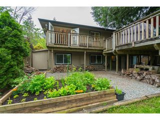Photo 35: 35371 WELLS GRAY Avenue in Abbotsford: Abbotsford East House for sale : MLS®# R2462573