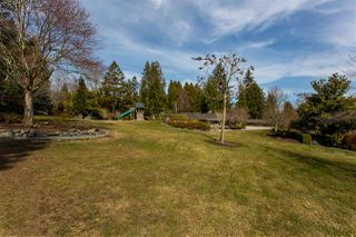 "Photo 14: 21446 76 Avenue in Langley: Willoughby Heights House for sale in ""Willoughby Heights"" : MLS®# R2405321"
