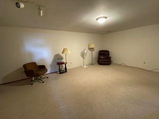 Photo 20: 14307 53 Street in Edmonton: Zone 02 House for sale : MLS®# E4192140